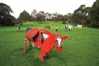 Jeff Thomson, Cows 1987, painted corrugated iron, Heide Museum of Modern Art, Melbourne, Photograph: John Gollings 2010