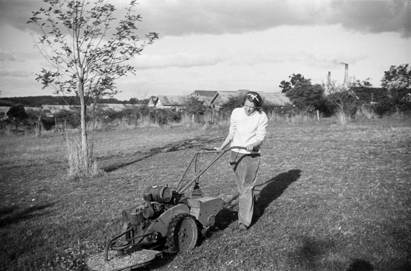 Sunday Mowing c.1950, Reed/Heide Photograph Collection State Library of Victoria, Melbourn, Photographer unknown