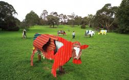 Jeff Thomson, Cows 1987, painted corrugated iron, Heide Museum of Modern Art, Photograph: John Gollings 2010