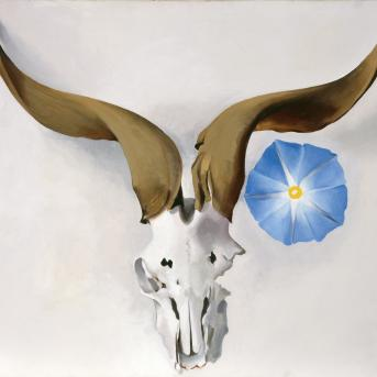 Georgia O'Keeffe, Ram's Head, Blue Morning Glory 1938, oil on canvas, 50.8 x 76.2 cm, Georgia O'Keeffe Museum, © Georgia O'Keeffe Museum
